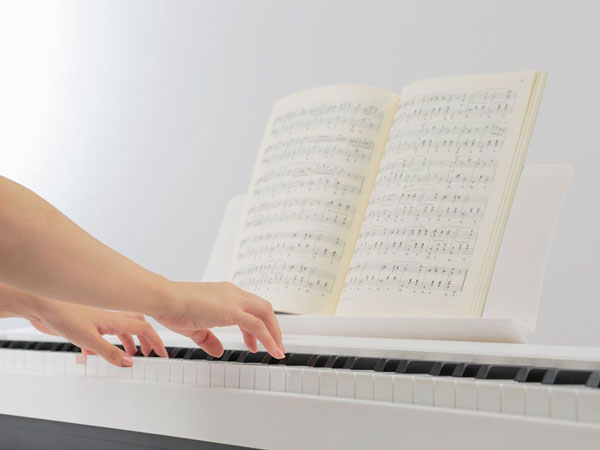 ES Portable Series Digital Piano Keyboard