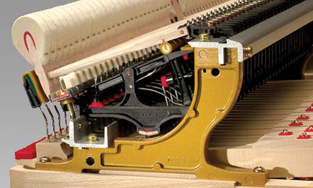 ABS-Carbon Action Parts