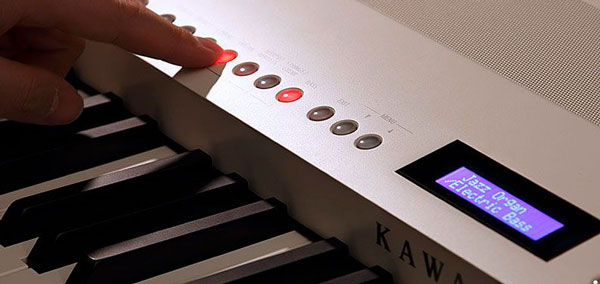 ES Portable Series Digital Piano Panel